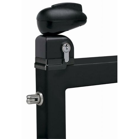 Serrure Twist pour portillon de piscine LOCINOX - noir ral 9005 - TWIST 40 9005