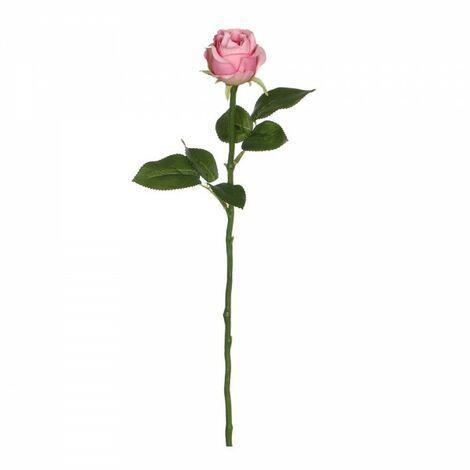 Rose rose 45cm
