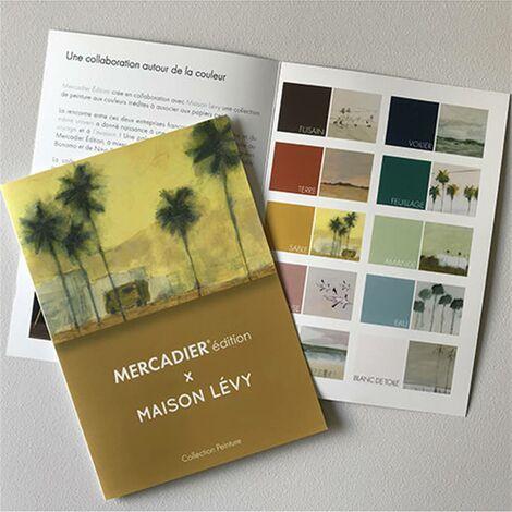 Brochure Couleurs Peinture Mercadier Edition - Maison Lévy (imprimée)