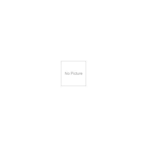 INTEX Child Pool Crocodile Slide Sprinkler Park Pool
