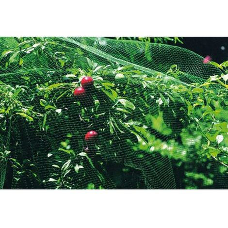 Malla Anti-Pajaro 4X12Mt Natuur Verde Nt118601