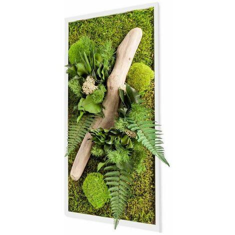 Tableau végétal rectangle nature avec plantes stabilisées