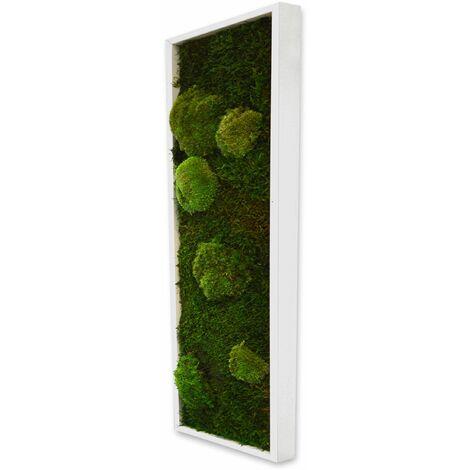 Panneau végétal mousse avec plantes stabilisées - Blanc (cadre)