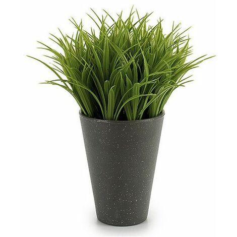 Plante décorative Ibergarden (9 x 18 x 9 cm) Plastique