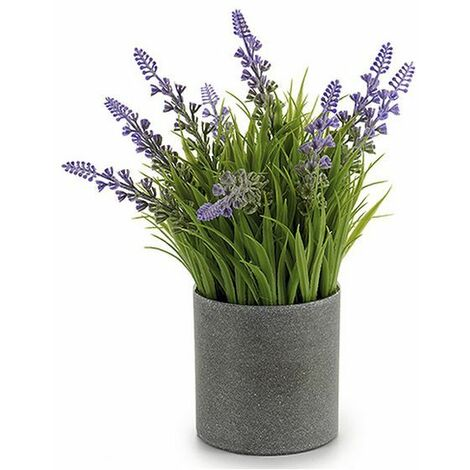 Plante décorative Ibergarden Gris Plastique (8 x 23 x 8 cm)