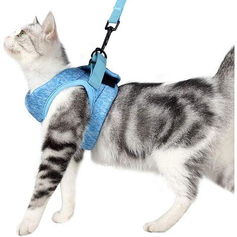 ILoveMilan Harnais et laisse pour chat Collier chaton ultra-léger Veste de marche pour chat en cours d'exécution douce et confortable, étanche, adaptée aux chiots et lapins bleu, L )