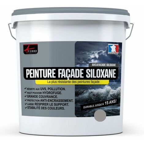 Peinture Facade Siloxane Hydrofuge - Durable jusqu a 15 ans - Rénovation Façade, mur crépi - ARCAFACADE SILOXANE