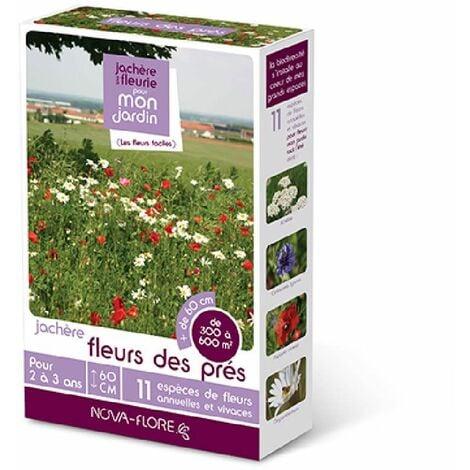 Prairies fleuries : jachères fleurs des prés 300 à 600 m2