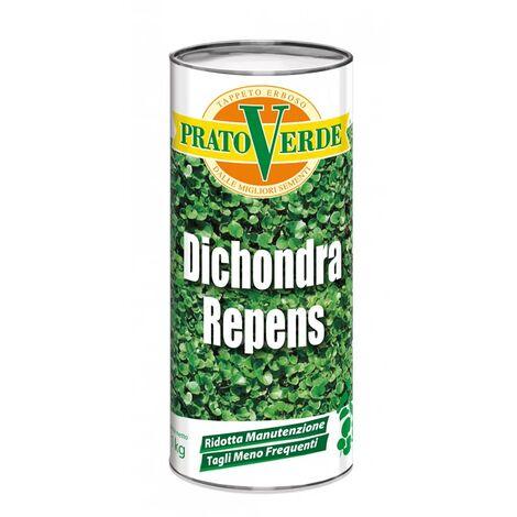 Dichondra Repens x 1 KG
