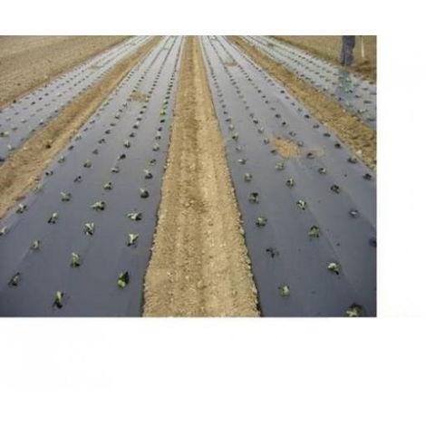 Filnova telo biodegradabile 100 metri x 1 metro per pacciamatura