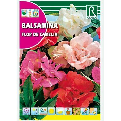 BALSAMINA FLOR DE CAMELIA VARIADA - SOBRE DE SEMILLAS 4G
