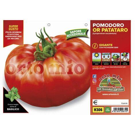 Pomodoro gigante Or Patataro - 6 piante - Orto Mio