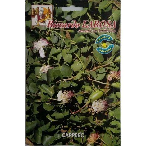 Semi di cappero buste sigillate semi di piante aromatiche capperi