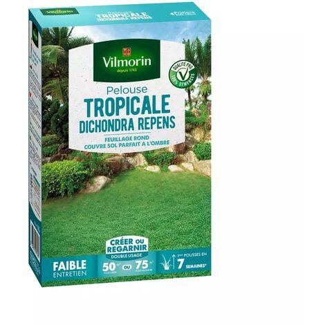 Gazon Dichondra Repens 500 gr