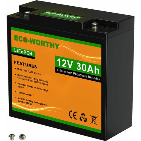 30Ah 12V 360Wh Battery Lithium Iron Phosphate LiFePO4 Battery For Power Wheel
