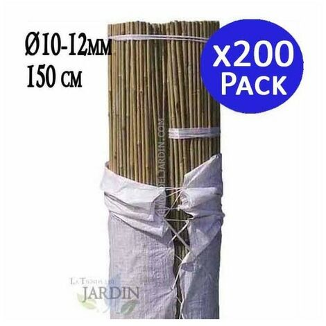 Tutor de Bambú natural 150 cm, 8-10 mm diámetro. 500 unidades