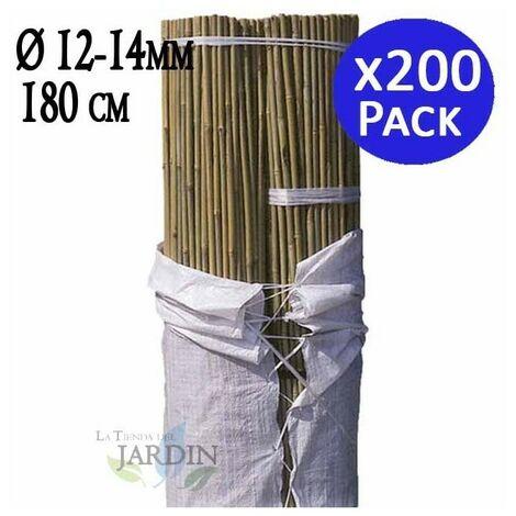 Tutor de Bambú natural 180 cm, 12-14 mm diámetro. 200 unidades