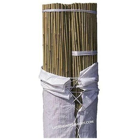 Tutor de Bambú natural 210 cm, 16-18 mm diámetro. 100 unidades
