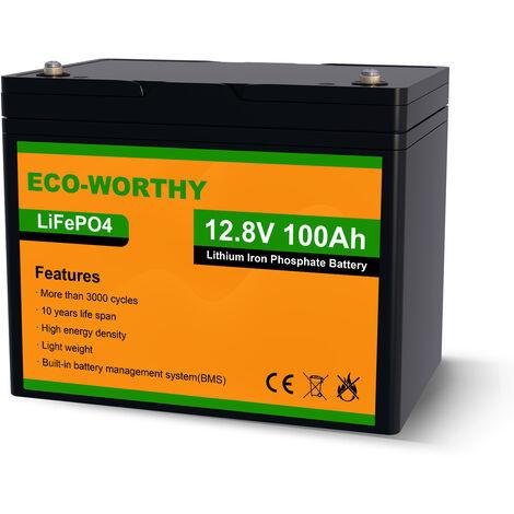 100Ah 12V 1.2KWh batterie lithium fer phosphate LiFePO4 batterie pour la roue de puissance