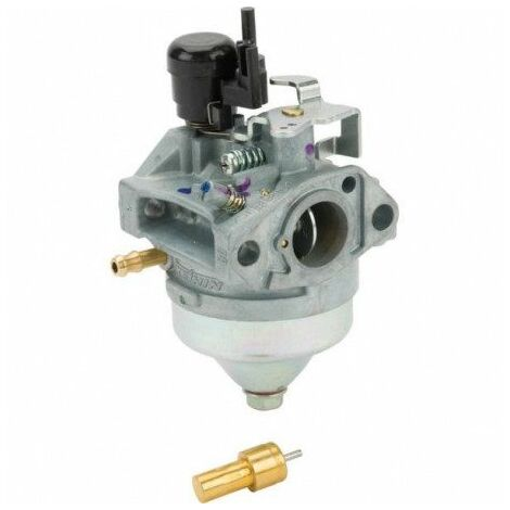 06161Z0Y315 Carburateur Honda