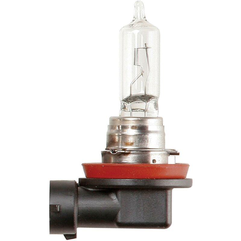 1 Ampoule 12v 65w H9