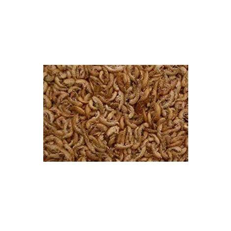 1 litre séché crevettes d'eau douce Gammarus