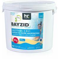 1 x 5 kg BAYZID® Multitabs 20g 5in1 für Pools