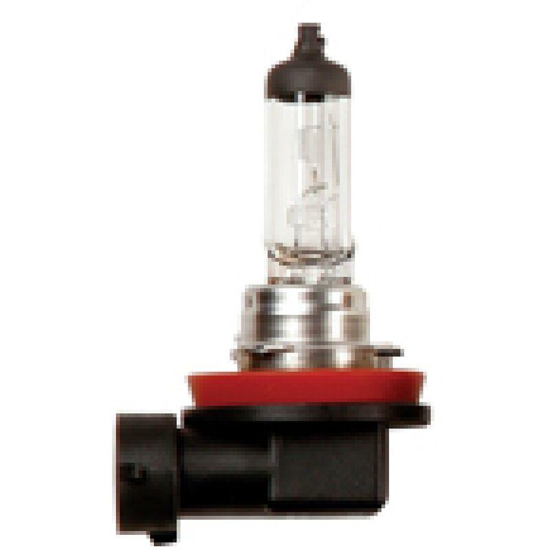10 Ampoules 12v 35w H8