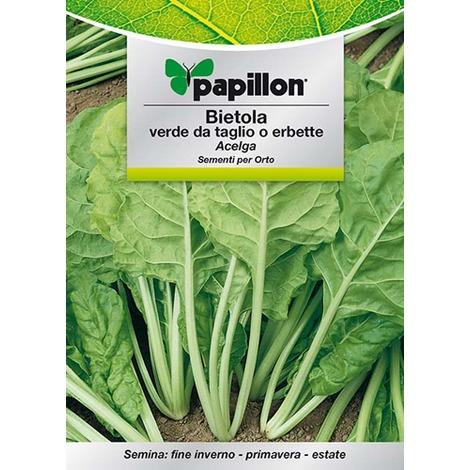"""10 confezioni di """"bietola verde da taglio o erbette"""" papillon"""