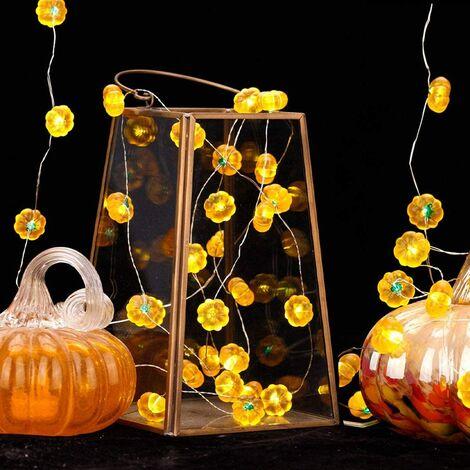 10 Ones Design Lot de 2 lumières de citrouille de Thanksgiving 3D, décor de guirlande d'automne, total 20 pi 40 lumières blanches chaudes à LED lumières d'automne alimentées par batterie pour Halloween Thanksgiving récolte de citrouilles décorations d'int
