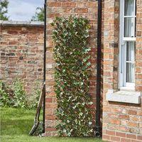 180x60cm Faux Maple Leaf Trellis