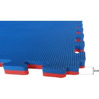 1sqm/10.7sqft (1 Mat) 20 mm Red and Blue Martial Arts Tatami Judo Karate MMA Gym Boxing Floor Mat