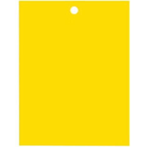 20Pcs Double Face Collant Pieges Interieur Exterieur Des Plantes Pieges Gnat Avec Liens Torsades Pour La Capture D'Insectes Volants Pucerons Mineuses Thrips, L