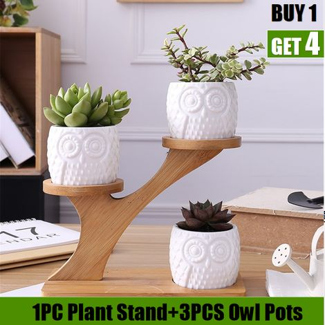 3 Pack / Set Planter para macetas de suculentas Bonsai Pot Bamboo Plants Stand Sets