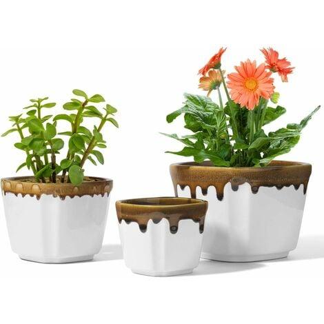 3 Tailles Pot de Fleur Blanc Lot de 3, Céramique Succulent Pots de Plantes, Petit Moderne Cactus Jardinières de Fleurs (Plante Non Incluse)