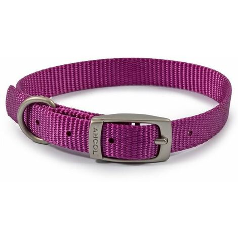 310080 - Nylon Collar Purple 20-26cm Size 1