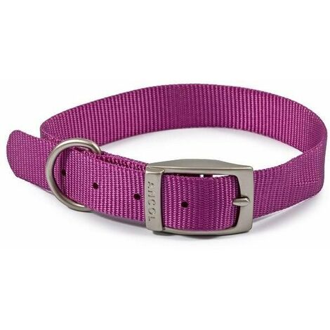 310180 - Nylon Collar Purple 26-31cm Size 2
