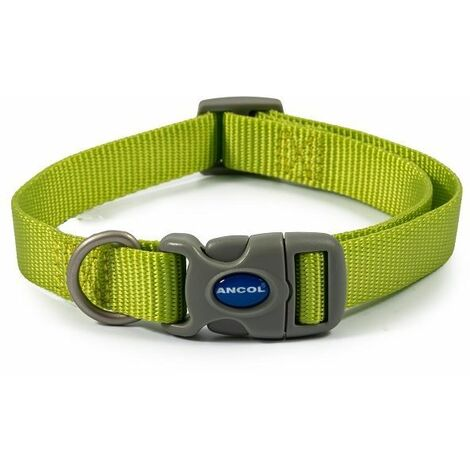 313060 - Nylon Adjustable Collar Lime 20-30cm Size 1-2