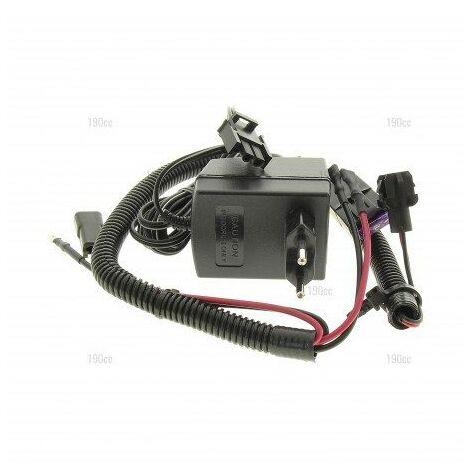 532192436 Chargeur de batterie tondeuse Mc Culloch