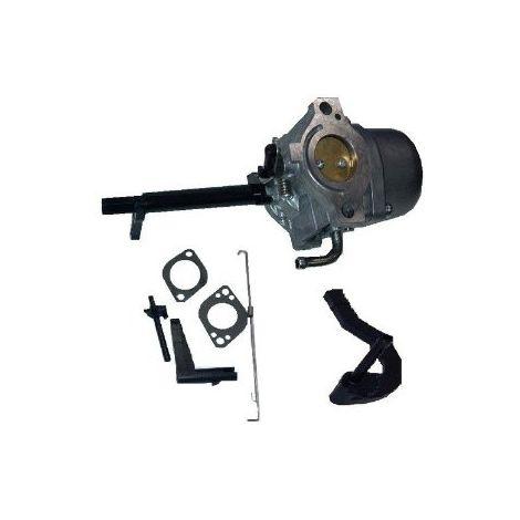591378 - Carburateur NIKKI pour moteur Briggs et Stratton
