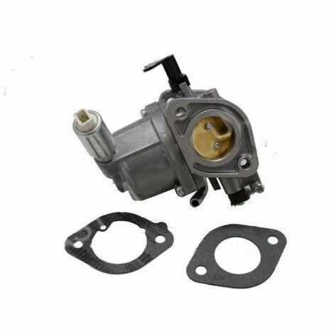 594207 Carburateur Briggs & Stratton
