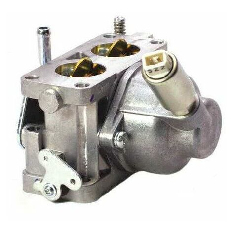 595613 Carburateur Briggs & Stratton