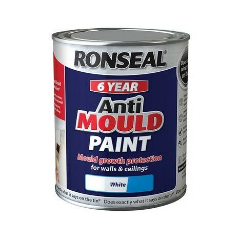 6 Year Anti Mould Paint