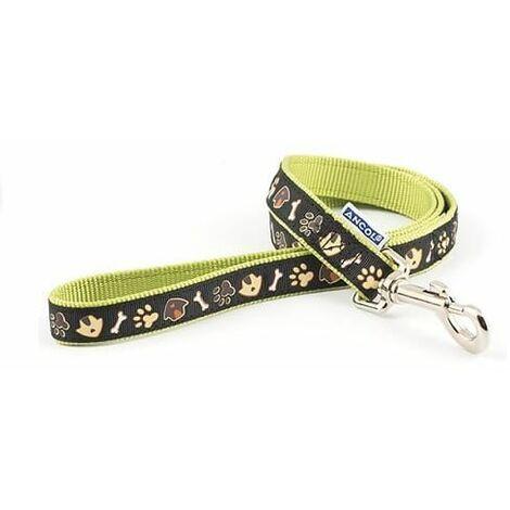 688730 - Dog & Kennel Nylon & Ribbon Lead 19mmx1m