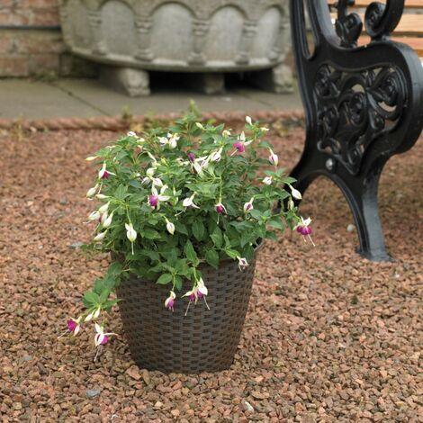 6x Kingfisher Rattan Effect Plastic Garden Indoor Flower Plant Pot Planter Brown
