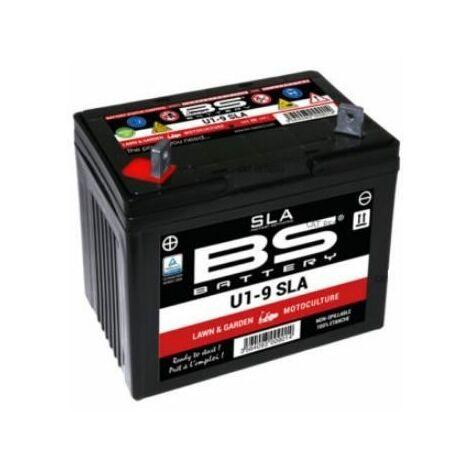 7251750A Batterie Autoportée Cub Cadet