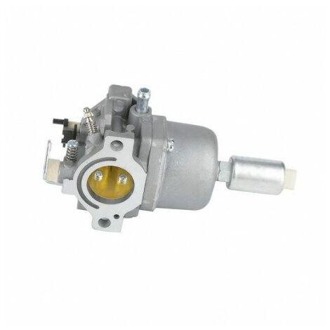 792768 Carburateur Briggs & Stratton
