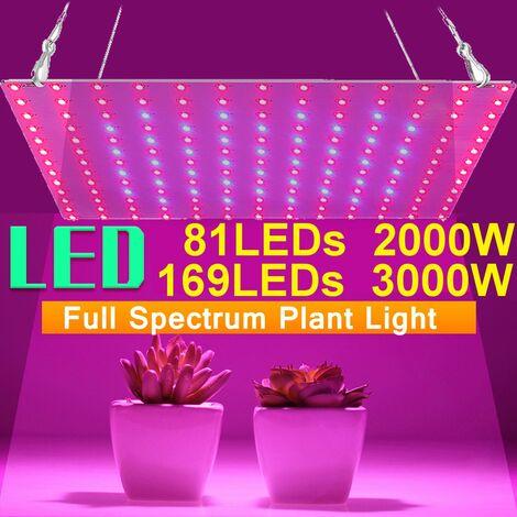 "main image of ""81LED Full Spectrum Plant Flower Lamp for Indoor Hydroponics (Type 1 (81LED - EU Plug))"""