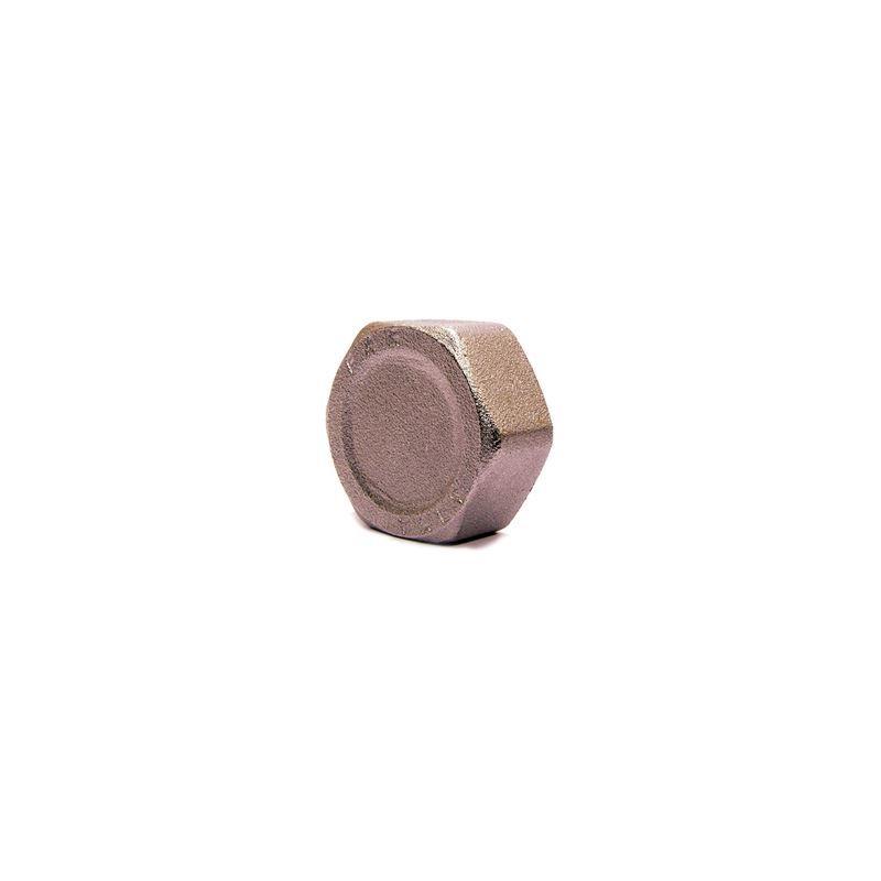 Image of Abacus Easiplan Manifold Cap 3/4' Female (EPWD-15-0505)