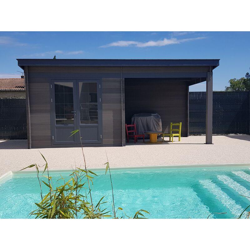 acheter populaire e72d6 dd205 Abri de jardin - Pool House composite 6x3 toit plat contemporain